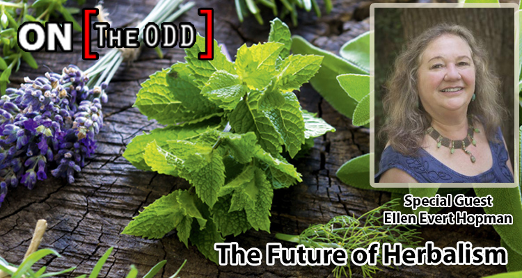 The Future of Herbalism