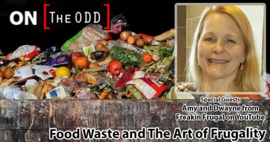 Food Waste and The Art of Frugality
